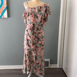 NWT Joie Jamima dress size 10